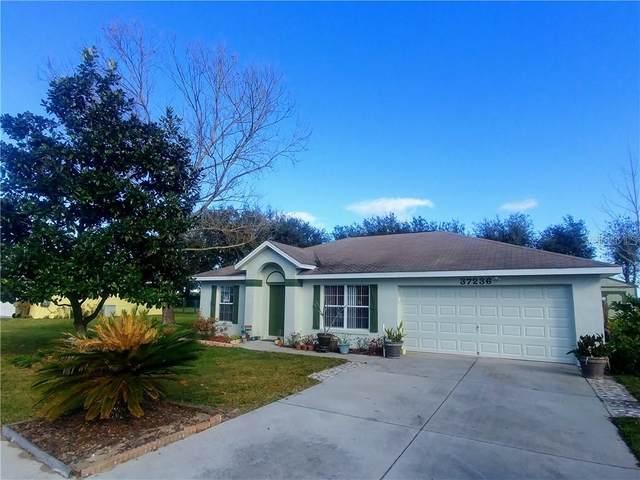 37236 Slice Lane, Grand Island, FL 32735 (MLS #G5026233) :: Alpha Equity Team