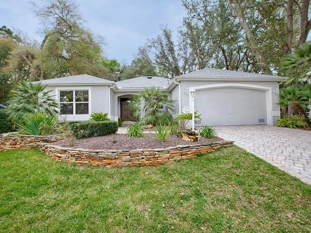 1002 San Felipe Lane, The Villages, FL 32159 (MLS #G5026274) :: The Dora Campbell Team