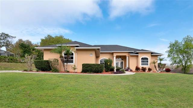 12121 Sapphire Drive, Clermont, FL 34711 (MLS #G5026303) :: The Light Team