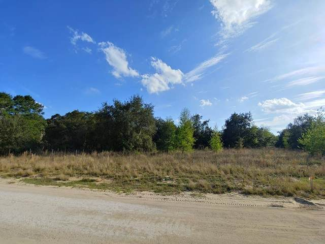 Lost Lake Road, Clermont, FL 34711 (MLS #G5026313) :: Bustamante Real Estate