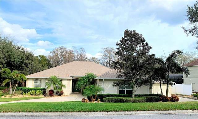 11027 Versailles Blvd, Clermont, FL 34711 (MLS #G5026332) :: Bustamante Real Estate