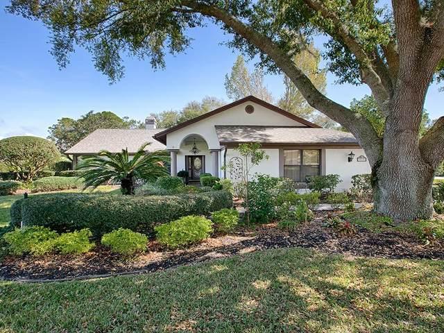 39234 Treeline Drive, Lady Lake, FL 32159 (MLS #G5026378) :: Griffin Group