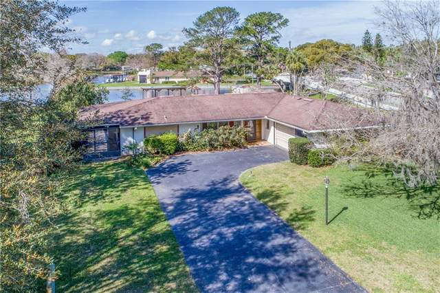 27918 Tammi Drive, Tavares, FL 32778 (MLS #G5026397) :: Griffin Group