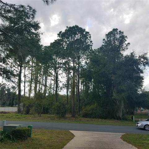 752 Oaks Shores Road, Leesburg, FL 34748 (MLS #G5026481) :: Premier Home Experts