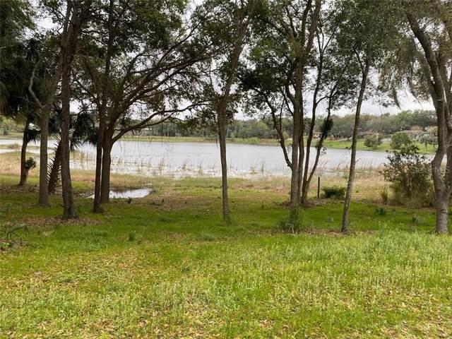 500 W Mirror Lake Drive, Fruitland Park, FL 34731 (MLS #G5026522) :: The Light Team