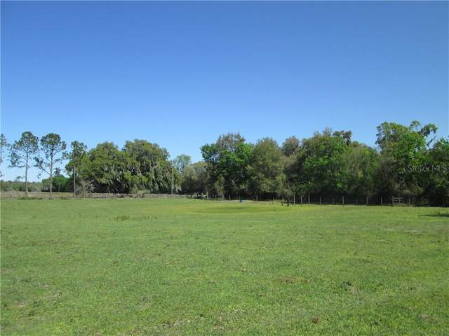 County Road 478, Webster, FL 33597 (MLS #G5026787) :: Premium Properties Real Estate Services