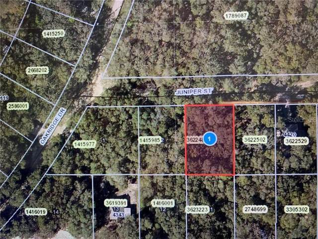 Juniper Street, Lady Lake, FL 32159 (MLS #G5026801) :: The Duncan Duo Team