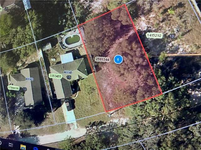 Oakridge Drive, Lady Lake, FL 32159 (MLS #G5026804) :: Young Real Estate