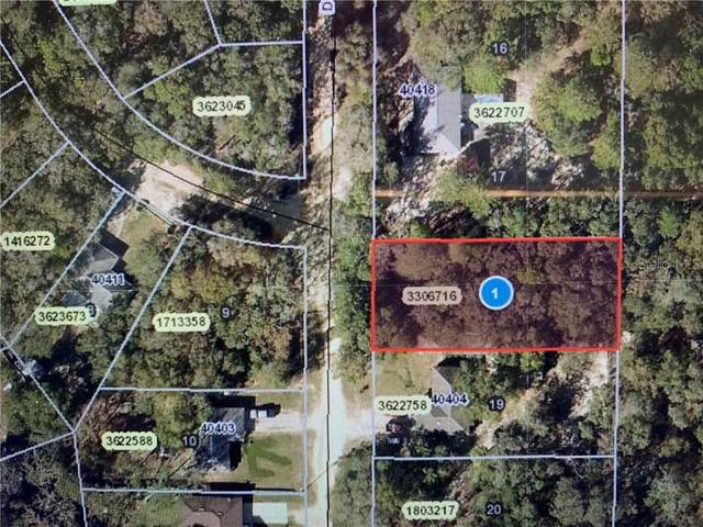 Dogwood Way, Lady Lake, FL 32159 (MLS #G5026805) :: The A Team of Charles Rutenberg Realty