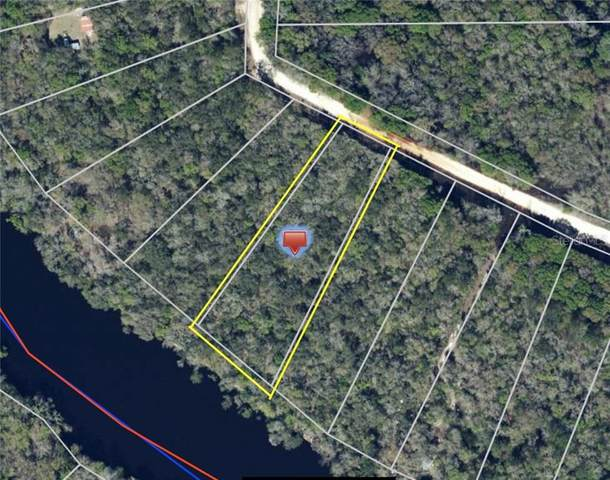 229TH Drive, Live Oak, FL 32060 (MLS #G5027066) :: Rabell Realty Group