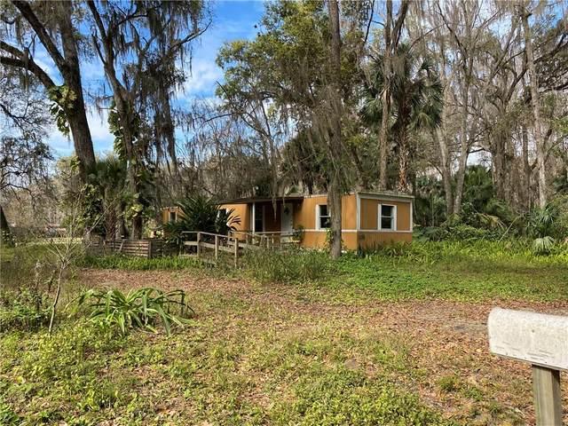 2878 Cr 426E, Lake Panasoffkee, FL 33538 (MLS #G5027110) :: The Figueroa Team