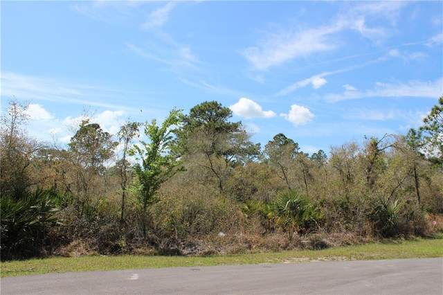 W Bluebell Avenue, Eustis, FL 32736 (MLS #G5027432) :: Lockhart & Walseth Team, Realtors