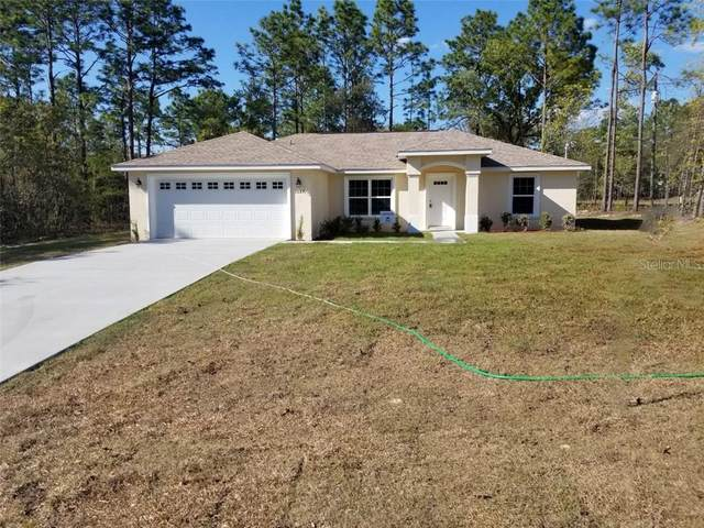 1687 W Cary Drive, Citrus Springs, FL 34434 (MLS #G5027700) :: Bustamante Real Estate