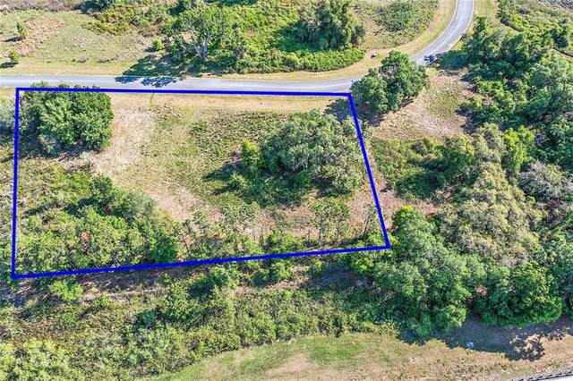458 Long And Winding Road, Groveland, FL 34737 (MLS #G5027899) :: Rabell Realty Group