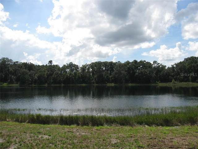 Malauka Malauka Loop, Ocklawaha, FL 32179 (MLS #G5027914) :: Team Borham at Keller Williams Realty