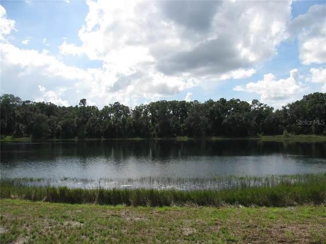 Malauka Malauka Loop, Ocklawaha, FL 32179 (MLS #G5027914) :: The A Team of Charles Rutenberg Realty