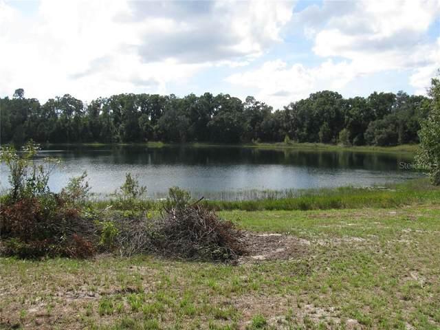 Malauka Loop, Ocklawaha, FL 32179 (MLS #G5027915) :: Everlane Realty