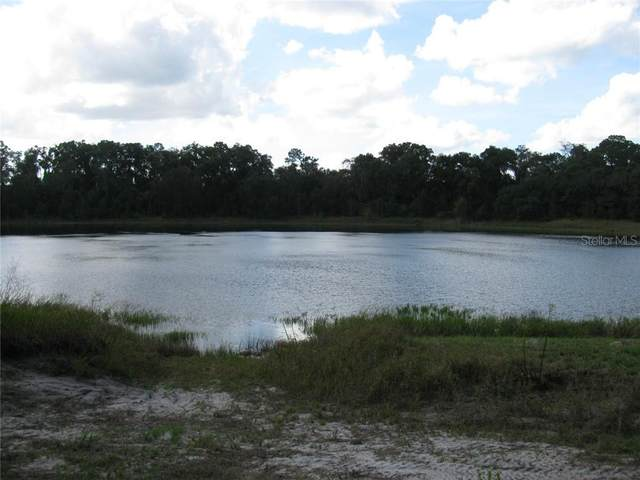 Malauka Loop, Ocklawaha, FL 32179 (MLS #G5027916) :: Bustamante Real Estate