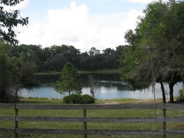 Malauka Malauka Loop, Ocklawaha, FL 32179 (MLS #G5027917) :: Charles Rutenberg Realty