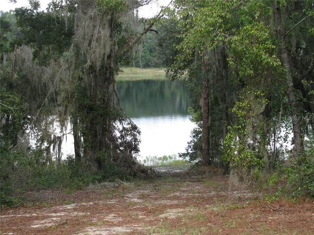 178 Malauka Loop, Ocklawaha, FL 32179 (MLS #G5027918) :: Bustamante Real Estate