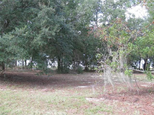 Malauka Loop, Ocklawaha, FL 32179 (MLS #G5027919) :: Bustamante Real Estate