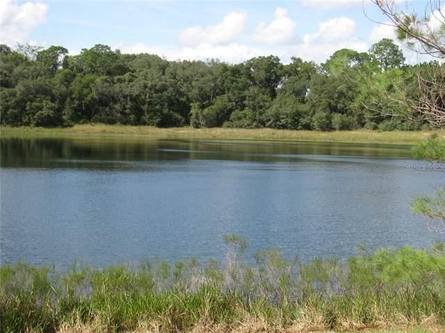Malauka Loop, Ocklawaha, FL 32179 (MLS #G5027920) :: Baird Realty Group