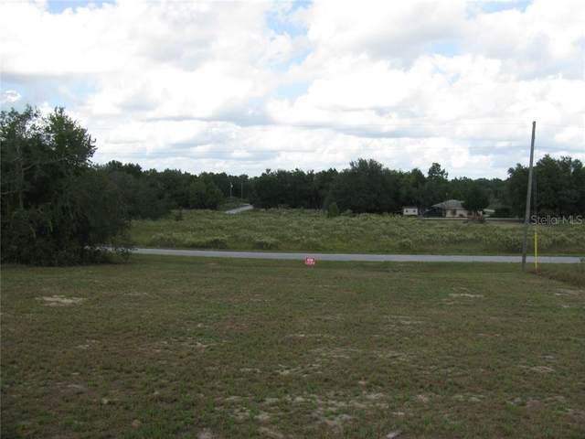 Malauka Loop, Ocklawaha, FL 32179 (MLS #G5027939) :: Team Bohannon Keller Williams, Tampa Properties