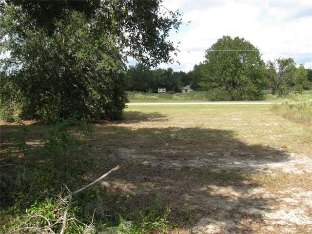 Malauka Loop, Ocklawaha, FL 32179 (MLS #G5027940) :: Team Bohannon Keller Williams, Tampa Properties