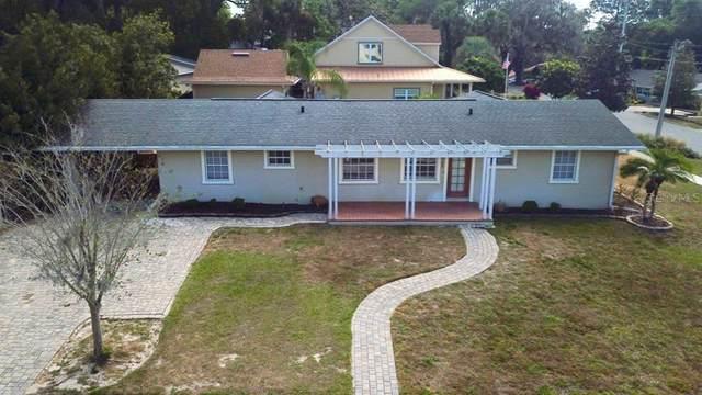 104 N Grandview Street, Mount Dora, FL 32757 (MLS #G5027976) :: Zarghami Group