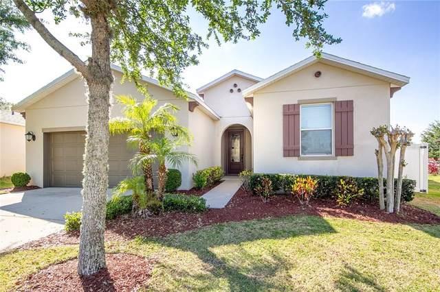 13623 Laranja Street, Clermont, FL 34711 (MLS #G5027978) :: Premier Home Experts