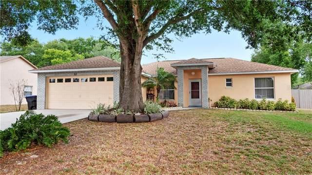 217 Ashley Road, Mascotte, FL 34753 (MLS #G5028010) :: Key Classic Realty
