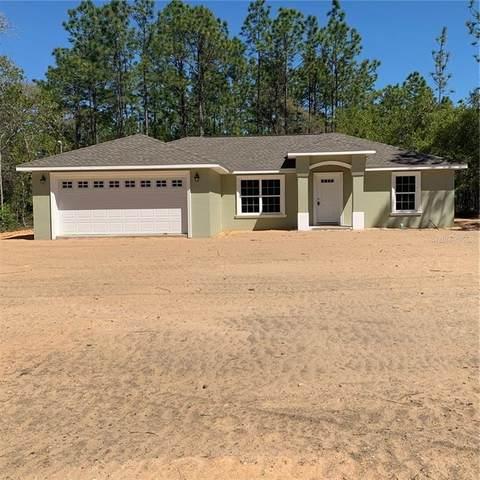 1609 W Cary Drive, Citrus Springs, FL 34434 (MLS #G5028044) :: Team Bohannon Keller Williams, Tampa Properties