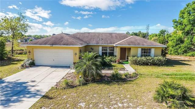 33 Locust Pass Run, Ocala, FL 34472 (MLS #G5028097) :: Bustamante Real Estate