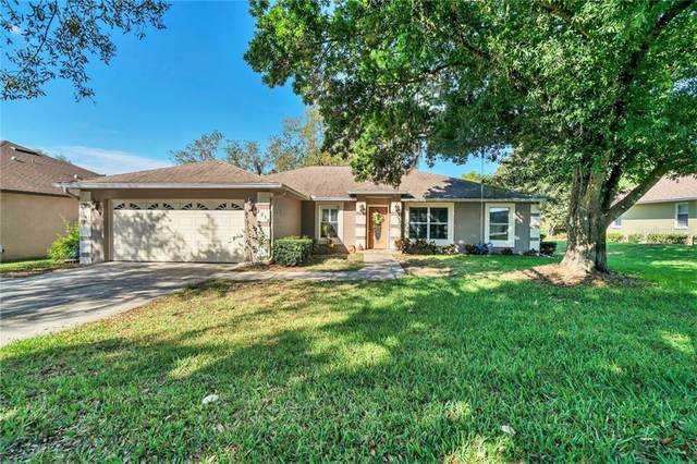 2294 Lakeview Avenue, Clermont, FL 34711 (MLS #G5028118) :: Griffin Group