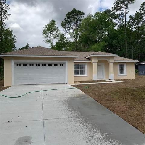9800 N Sandree Drive, Citrus Springs, FL 34434 (MLS #G5028159) :: Team Bohannon Keller Williams, Tampa Properties