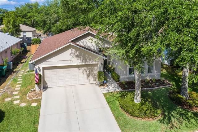 1010 Vassar Drive, Eustis, FL 32726 (MLS #G5028202) :: Baird Realty Group