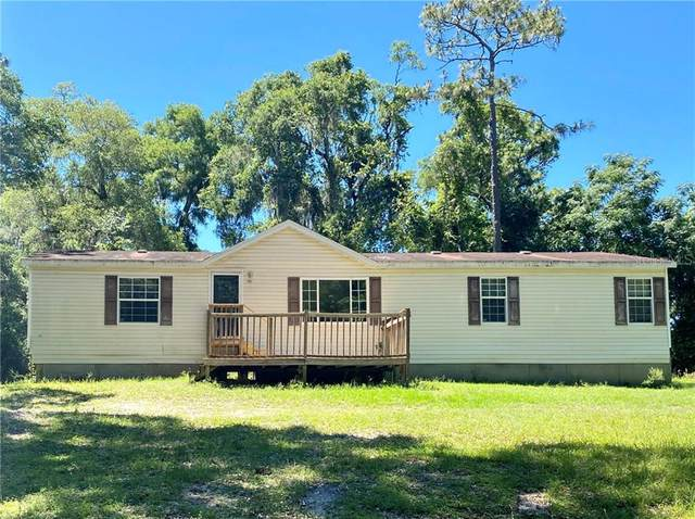 7157 Dentala Street, Brooksville, FL 34604 (MLS #G5028777) :: Baird Realty Group