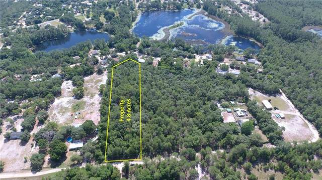 41945 Pine Valley Drive, Paisley, FL 32767 (MLS #G5028879) :: Rabell Realty Group