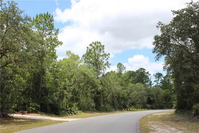 Lot 20 Poinciana Street, Eustis, FL 32736 (MLS #G5029269) :: Your Florida House Team