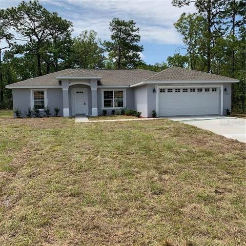 3774 W Forest Drive, Citrus Springs, FL 34433 (MLS #G5029469) :: The Robertson Real Estate Group