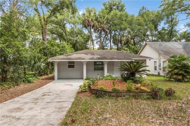 25341 Saint Anne Street, Mount Plymouth, FL 32776 (MLS #G5029491) :: Cartwright Realty