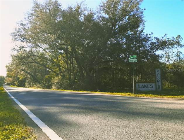 Palamino Lake Drive, Dade City, FL 33523 (MLS #G5029621) :: CENTURY 21 OneBlue