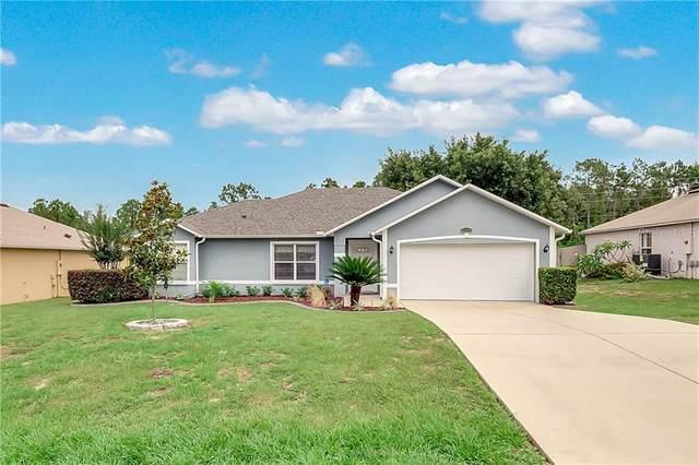 10404 Regal View Loop, Clermont, FL 34711 (MLS #G5029700) :: Bustamante Real Estate