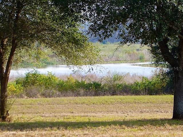 Royal Palm Drive Lot 35, Groveland, FL 34736 (MLS #G5029755) :: Key Classic Realty