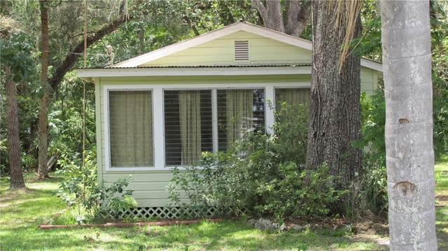 2790 Cr 423, Lake Panasoffkee, FL 33538 (MLS #G5029840) :: GO Realty