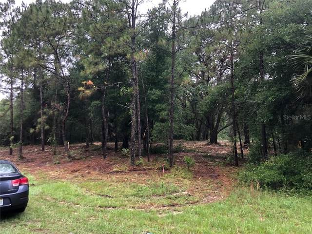 Central Ave & Hwy 42, Paisley, FL 32767 (MLS #G5030106) :: Bustamante Real Estate
