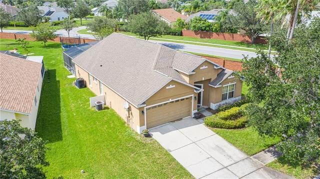 2503 Brookstone Drive, Kissimmee, FL 34744 (MLS #G5030187) :: Pepine Realty