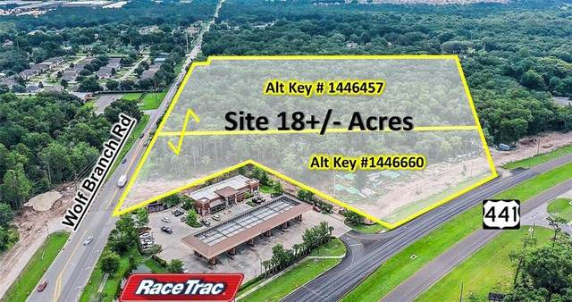 Us Hwy 441  & Wolf Branch Road, Mount Dora, FL 32757 (MLS #G5030559) :: Heckler Realty