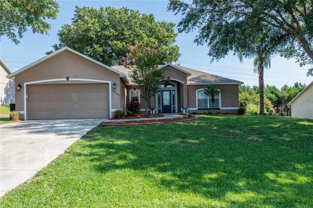 10542 Lake Hasson Circle, Clermont, FL 34711 (MLS #G5030604) :: Premier Home Experts