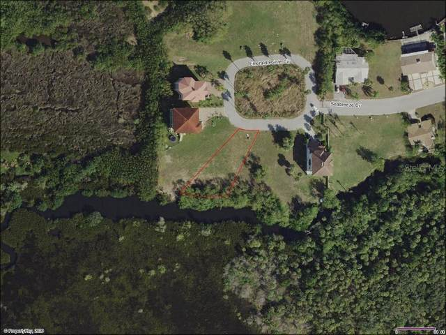 Emerald Pointe Circle Lot 4, Port Richey, FL 34668 (MLS #G5030665) :: Lockhart & Walseth Team, Realtors